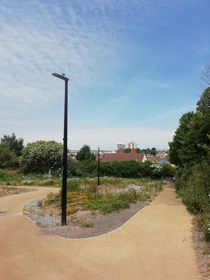 Photo of a pedestrian path inside a park.