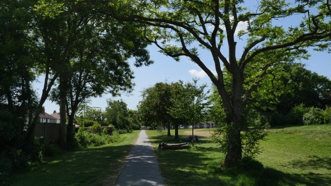 Photo of a pedestrian path in a park with big trees casting shadow over it.