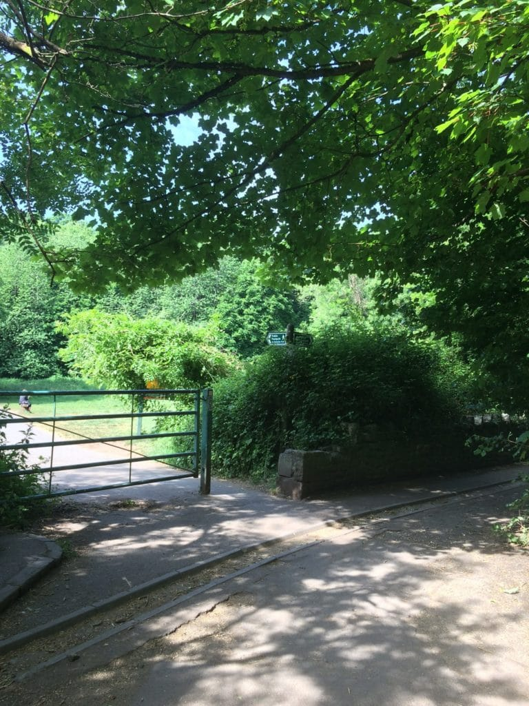 Photo taken of an entrance to a pedestrian path inside a park with big leafy trees.