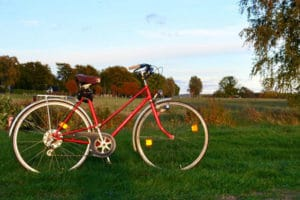 A red bicycle standing on a green field with trees in the background.